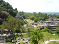 View of Palenque from the Temple of the Cross